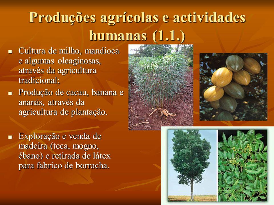 Produções agrícolas e actividades humanas (1.1.)