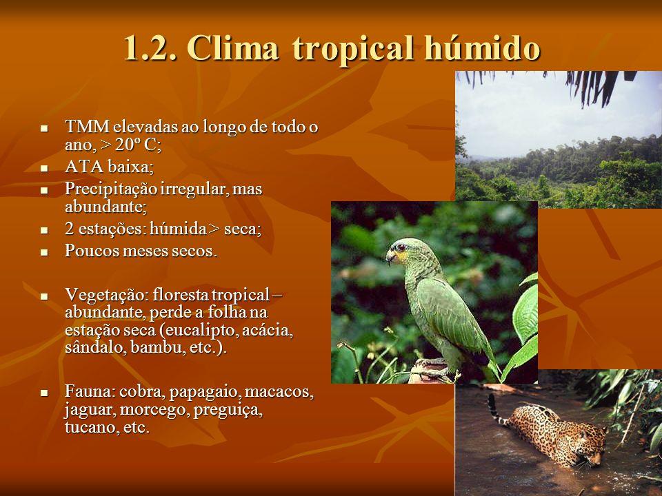 1.2. Clima tropical húmido TMM elevadas ao longo de todo o ano, > 20º C; ATA baixa; Precipitação irregular, mas abundante;