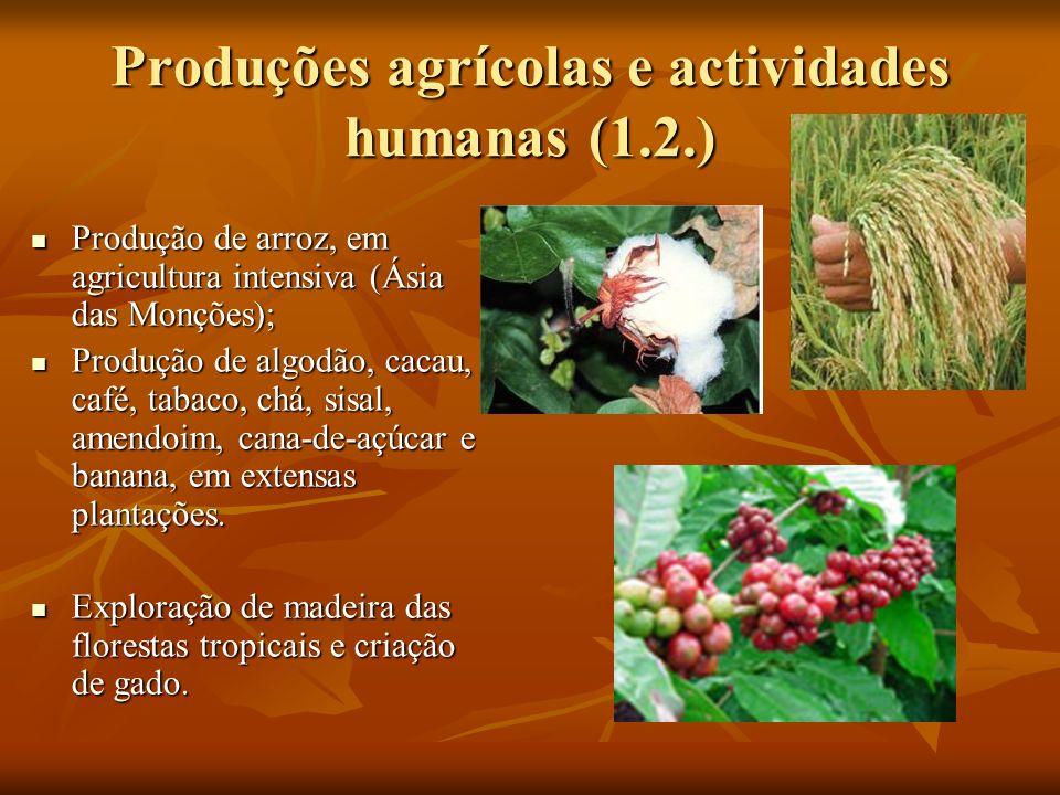 Produções agrícolas e actividades humanas (1.2.)
