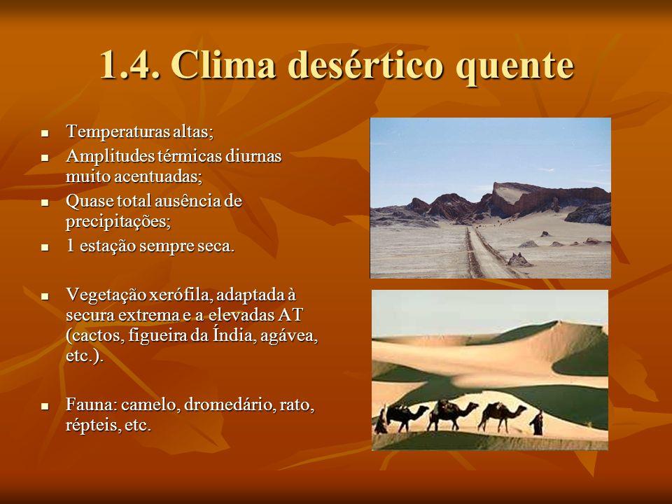 1.4. Clima desértico quente