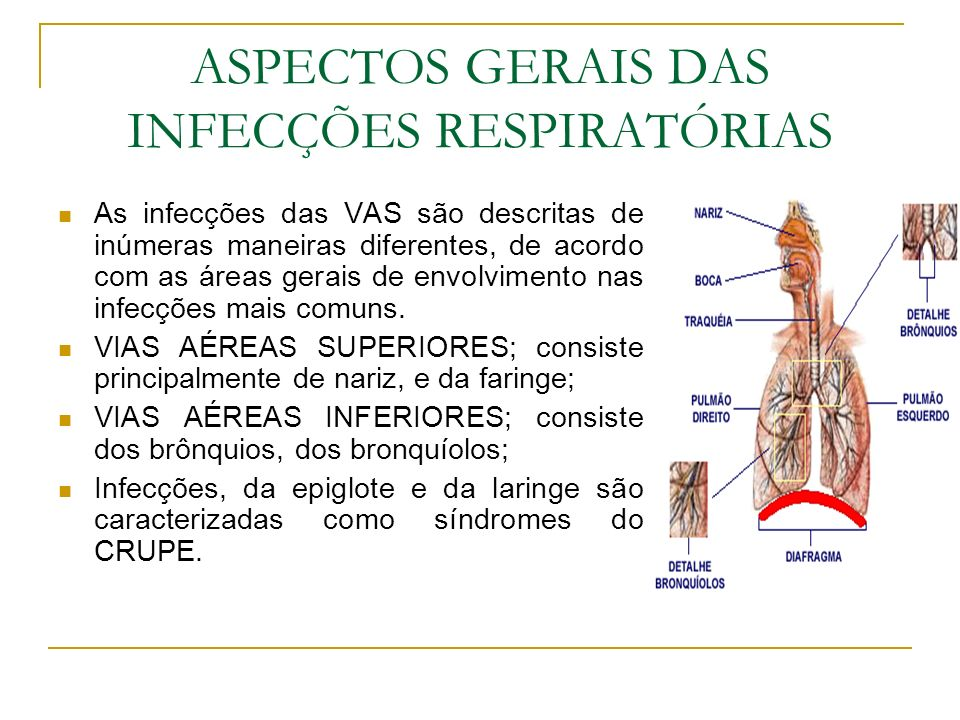 Resultado de imagem para infecções respiratorias