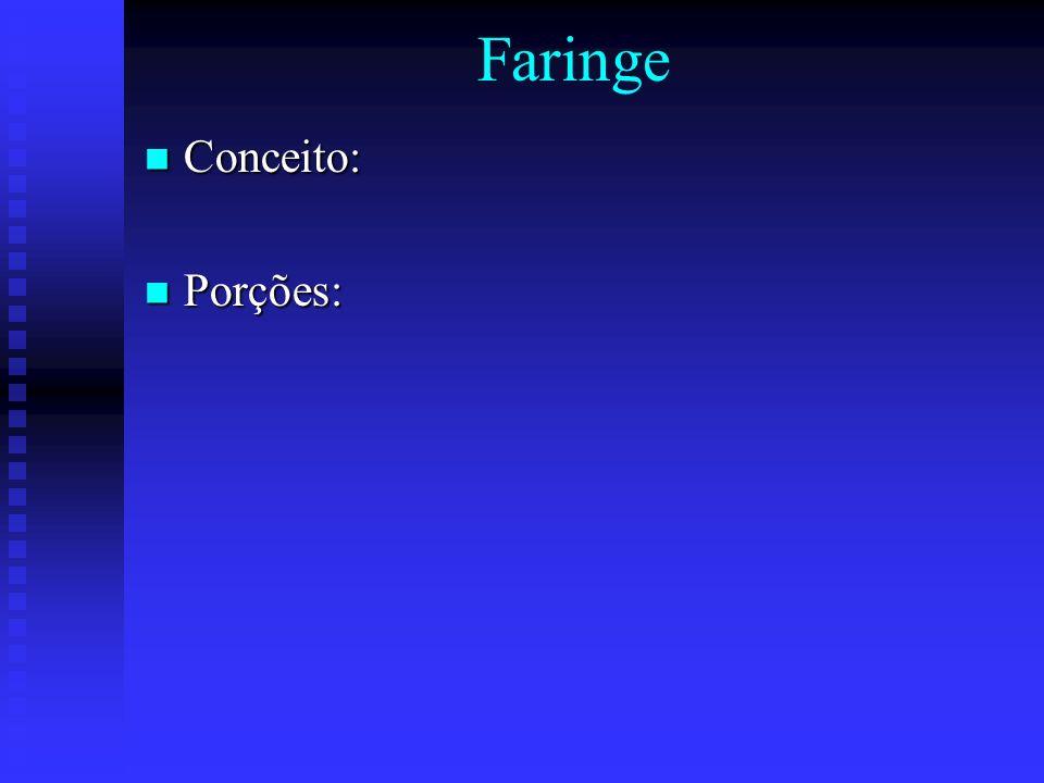 Faringe Conceito: Porções: