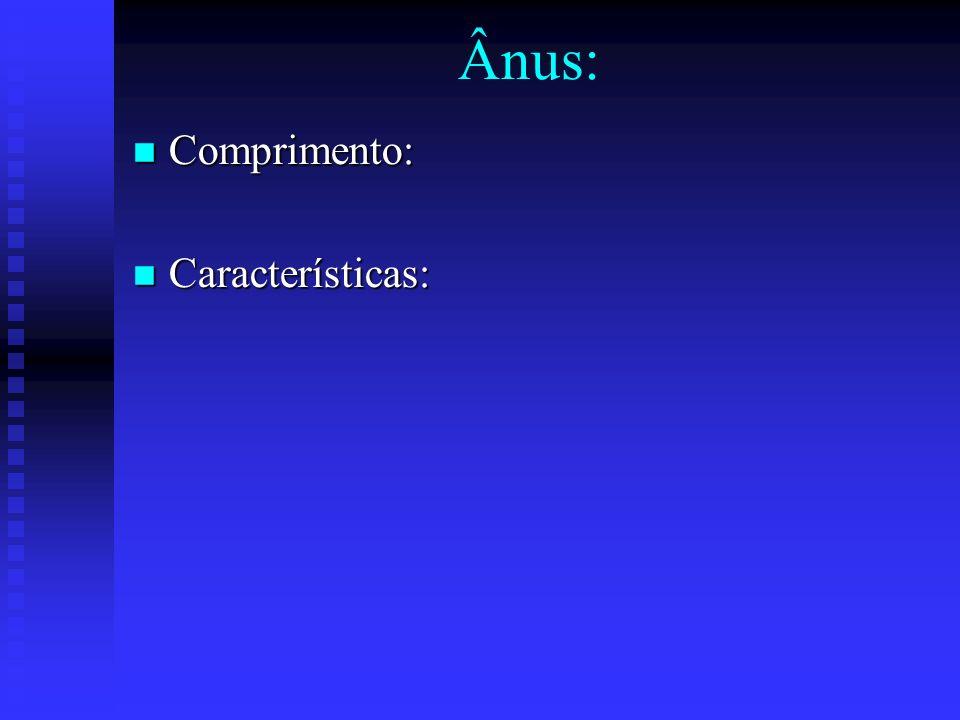 Ânus: Comprimento: Características: