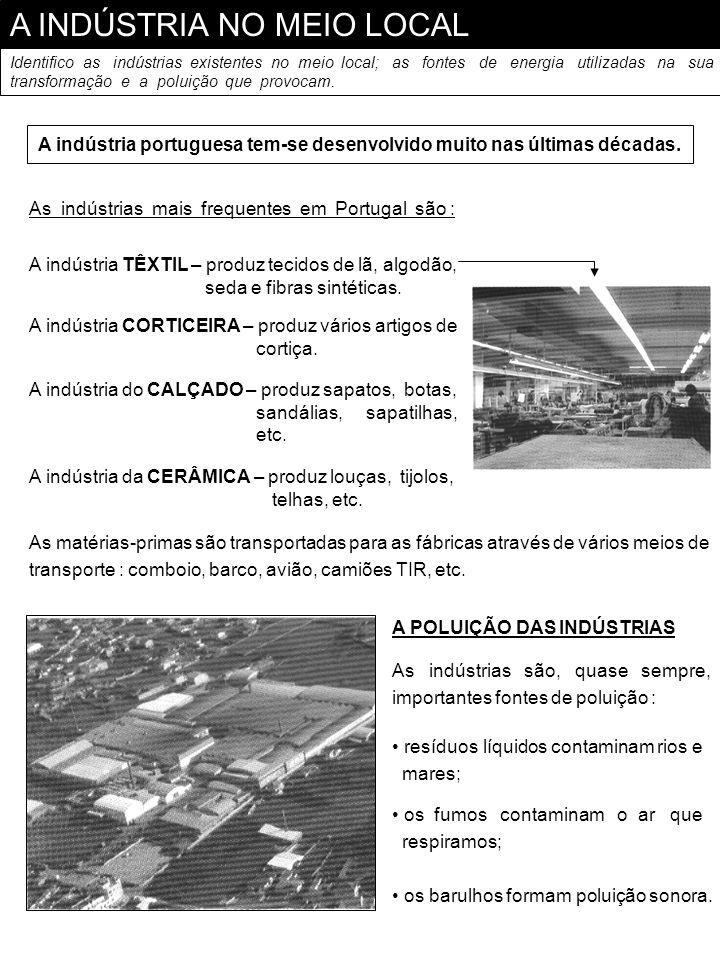 A indústria portuguesa tem-se desenvolvido muito nas últimas décadas.