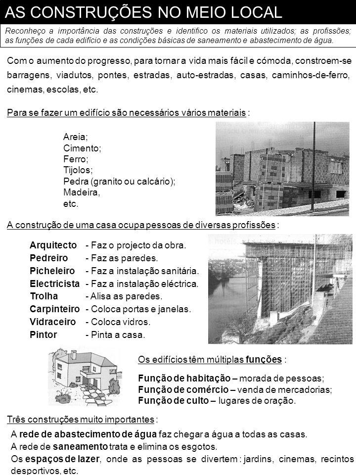 AS CONSTRUÇÕES NO MEIO LOCAL