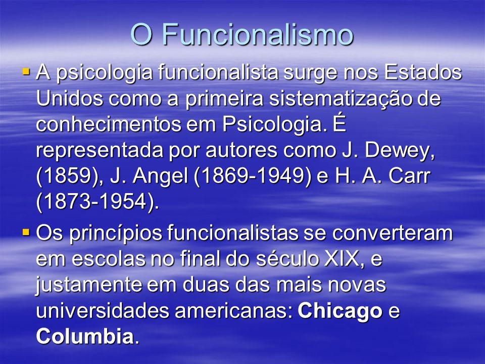 O Funcionalismo
