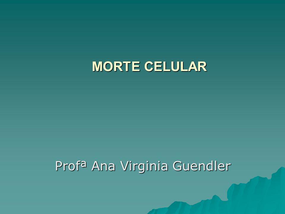 Profª Ana Virginia Guendler