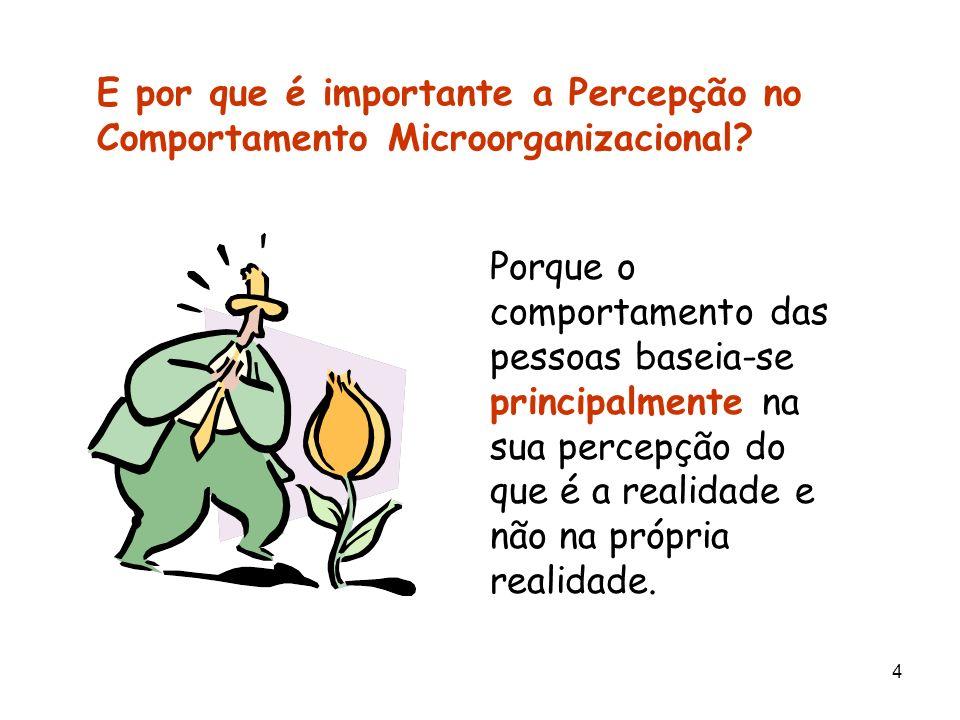 E por que é importante a Percepção no Comportamento Microorganizacional