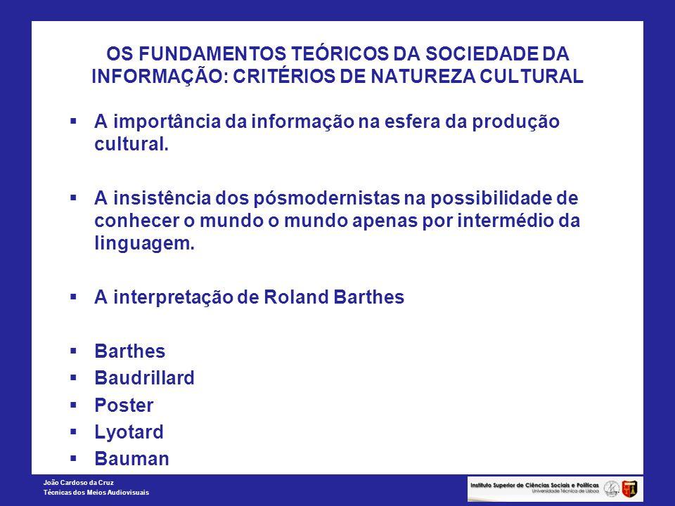 OS FUNDAMENTOS TEÓRICOS DA SOCIEDADE DA INFORMAÇÃO: CRITÉRIOS DE NATUREZA CULTURAL