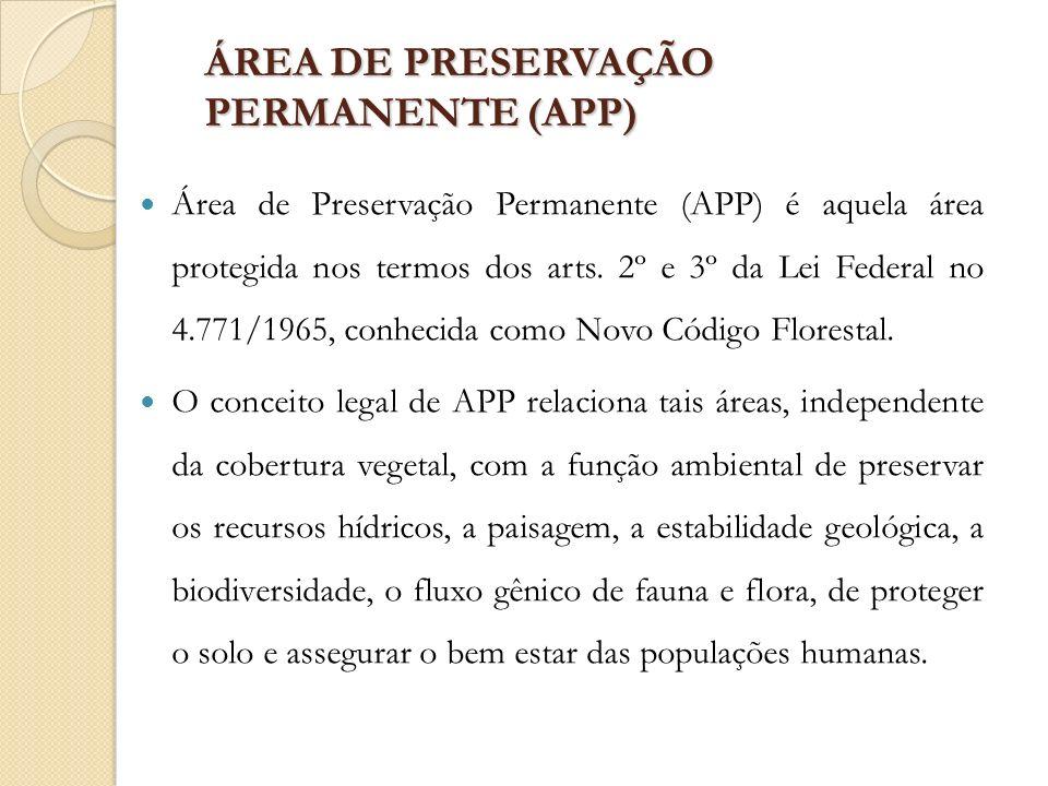 ÁREA DE PRESERVAÇÃO PERMANENTE (APP)