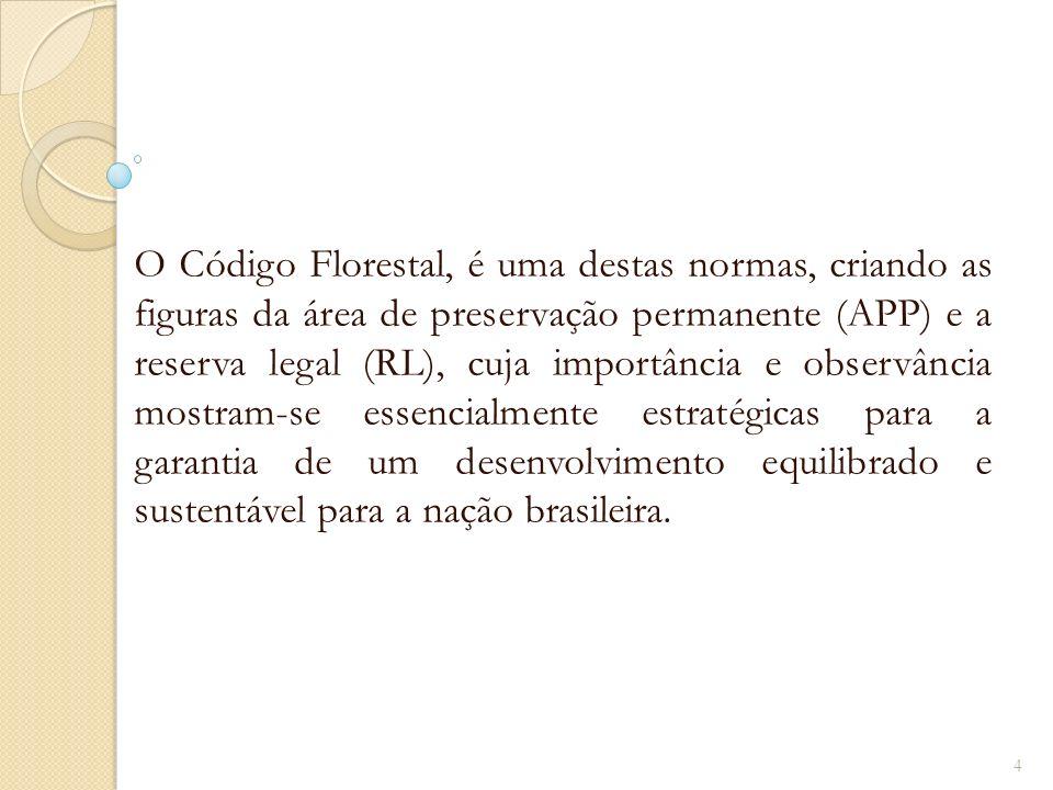 O Código Florestal, é uma destas normas, criando as figuras da área de preservação permanente (APP) e a reserva legal (RL), cuja importância e observância mostram-se essencialmente estratégicas para a garantia de um desenvolvimento equilibrado e sustentável para a nação brasileira.