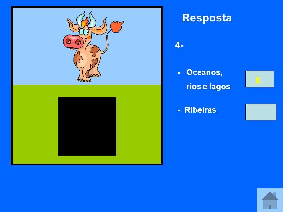 Resposta 4- - Oceanos, rios e lagos X - Ribeiras
