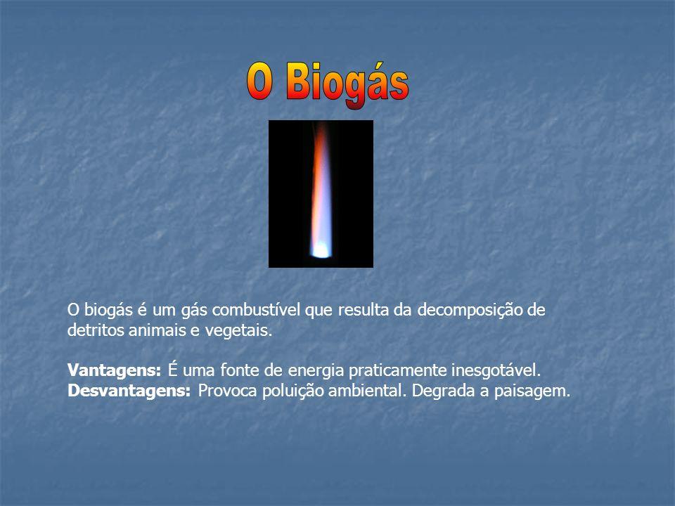 O Biogás O biogás é um gás combustível que resulta da decomposição de detritos animais e vegetais.