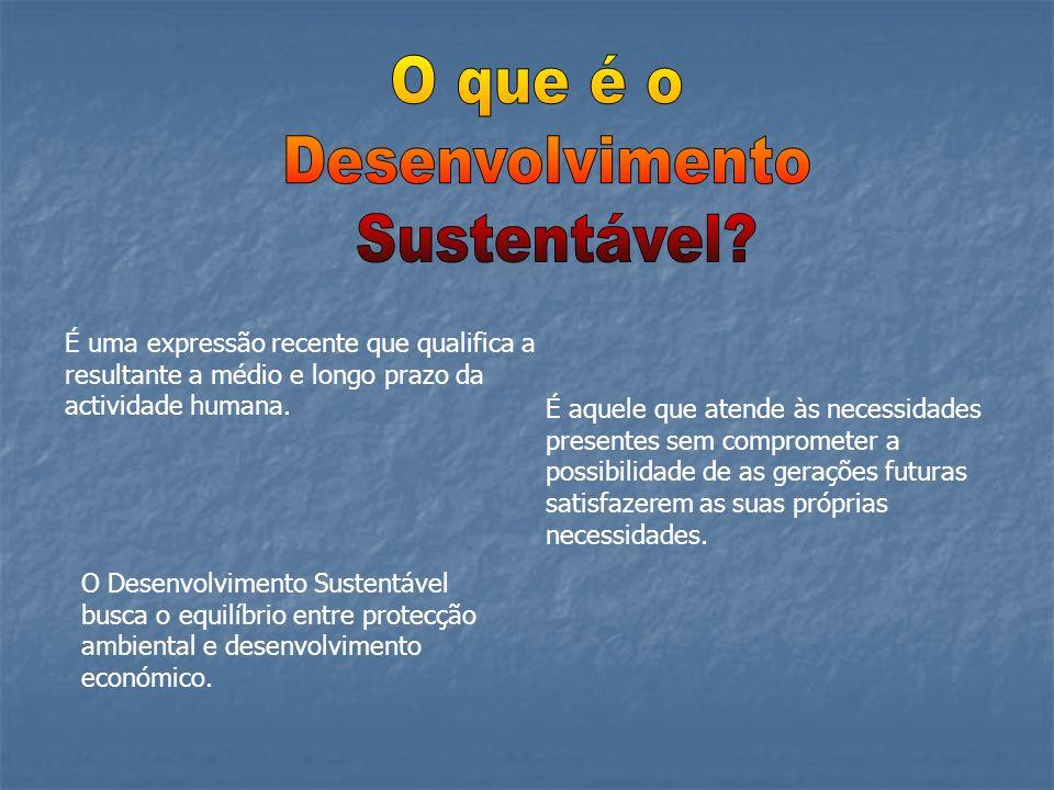 O que é o Desenvolvimento Sustentável