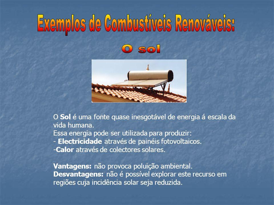 Exemplos de Combustíveis Renováveis: