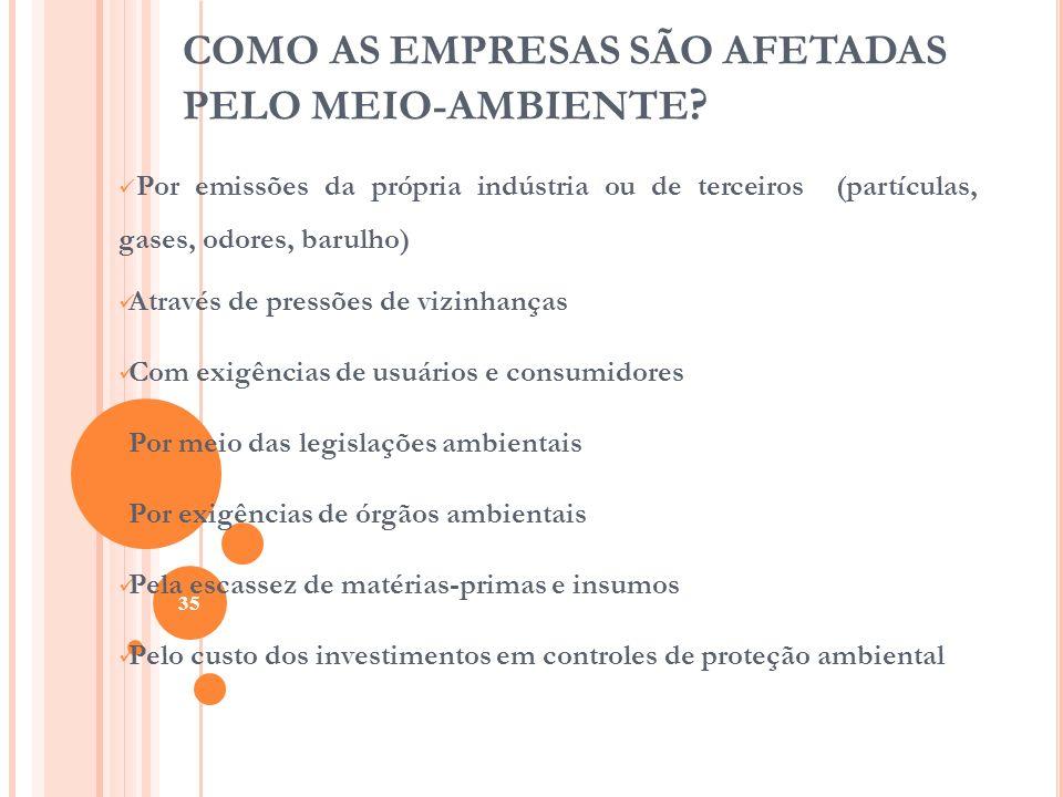 COMO AS EMPRESAS SÃO AFETADAS PELO MEIO-AMBIENTE