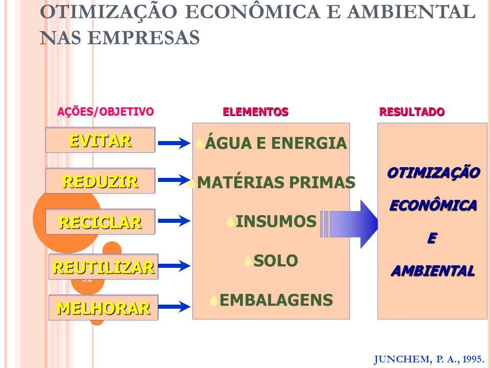 OTIMIZAÇÃO ECONÔMICA E AMBIENTAL NAS EMPRESAS