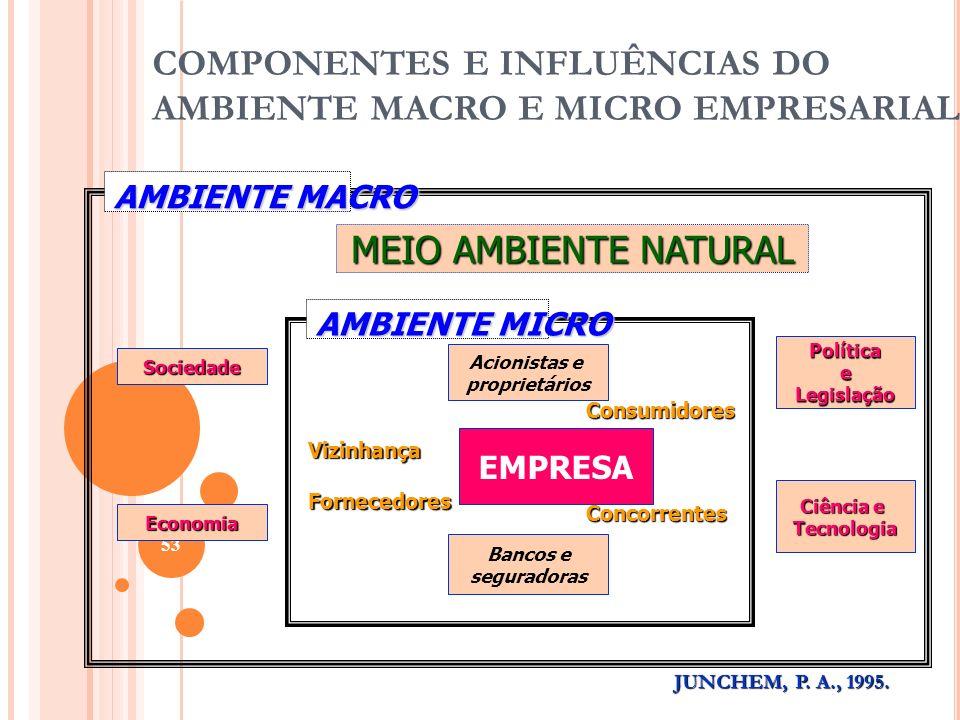 COMPONENTES E INFLUÊNCIAS DO AMBIENTE MACRO E MICRO EMPRESARIAL