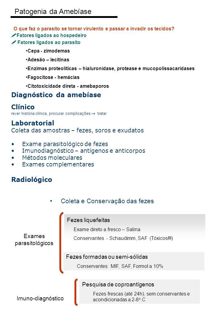 Exames parasitológicos