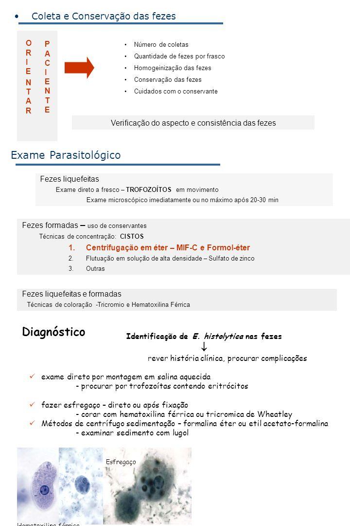 Identificação de E. histolytica nas fezes