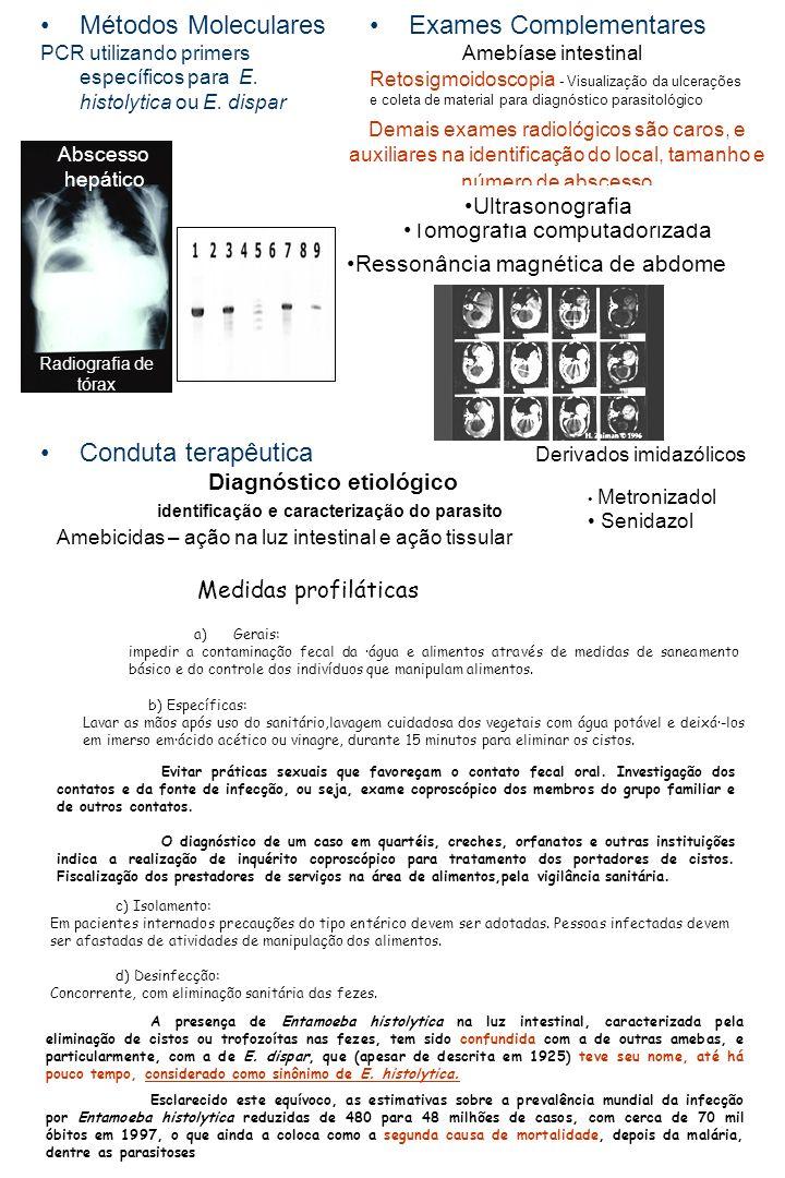 Diagnóstico etiológico identificação e caracterização do parasito