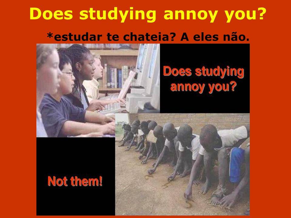 Does studying annoy you *estudar te chateia A eles não.