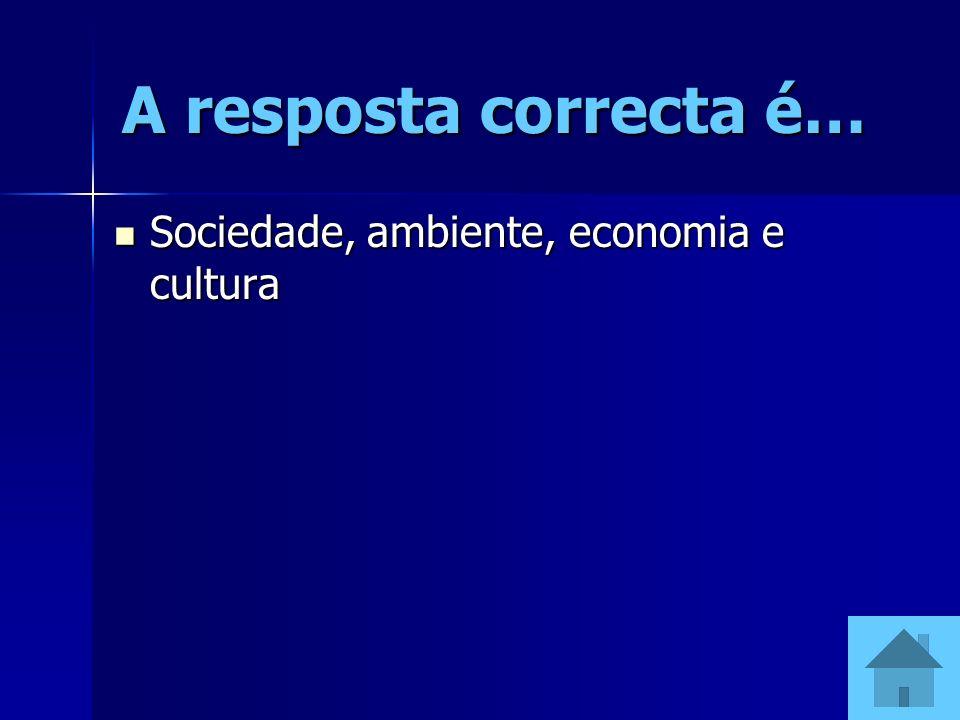 A resposta correcta é… Sociedade, ambiente, economia e cultura