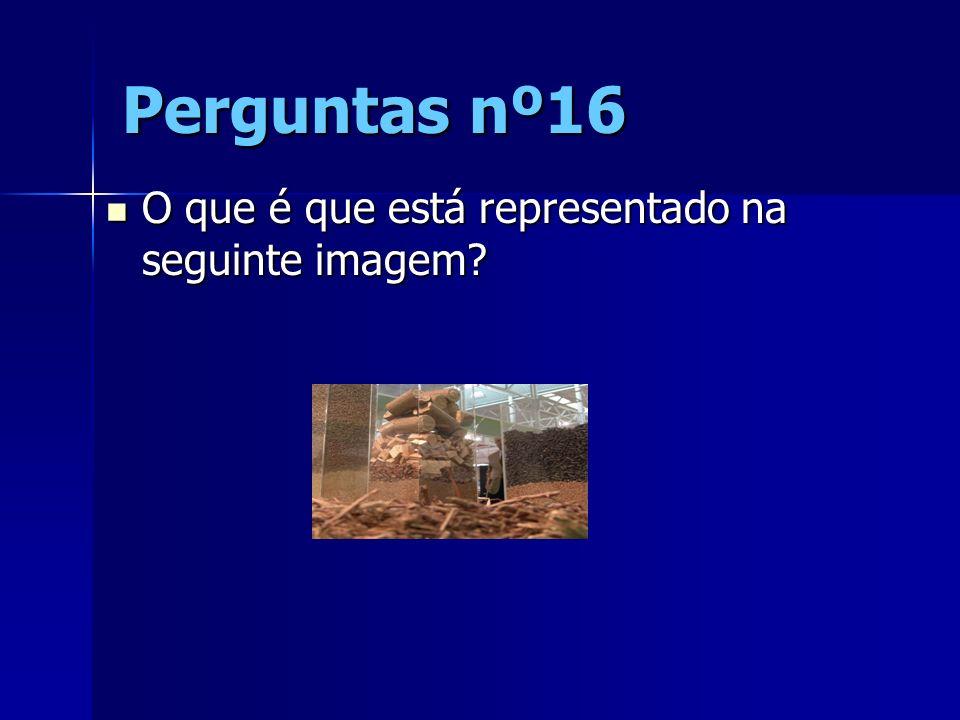Perguntas nº16 O que é que está representado na seguinte imagem