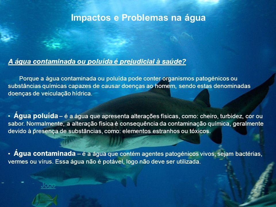 Impactos e Problemas na água