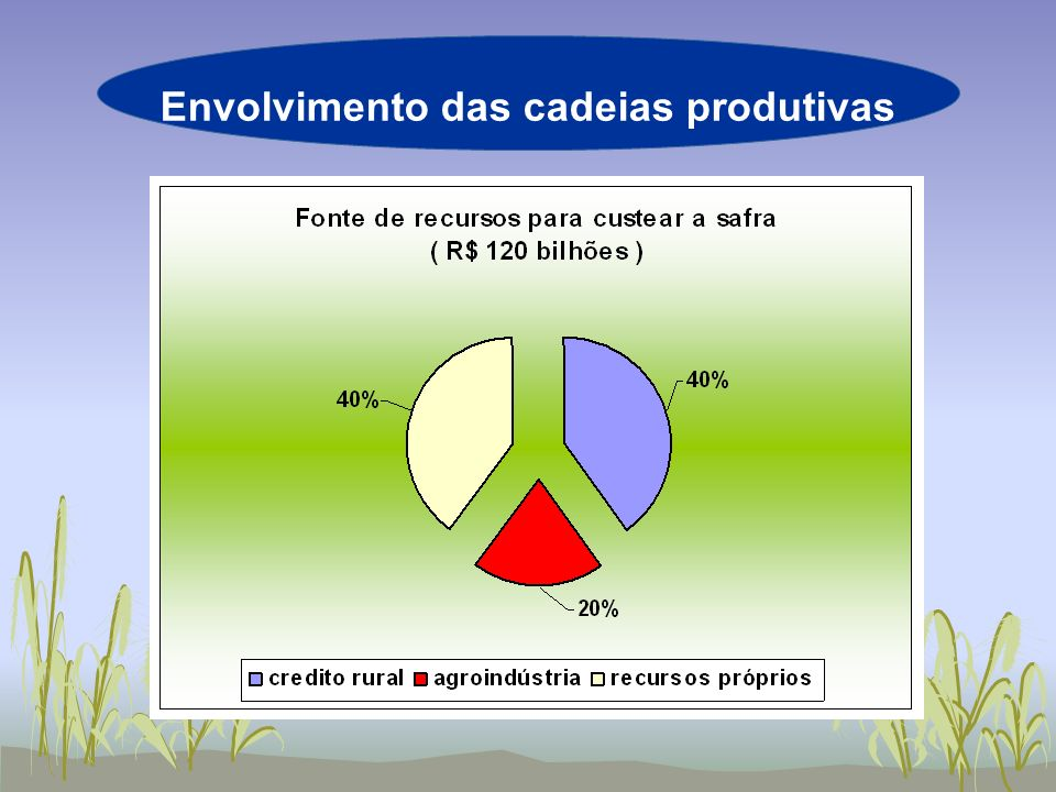 Envolvimento das cadeias produtivas