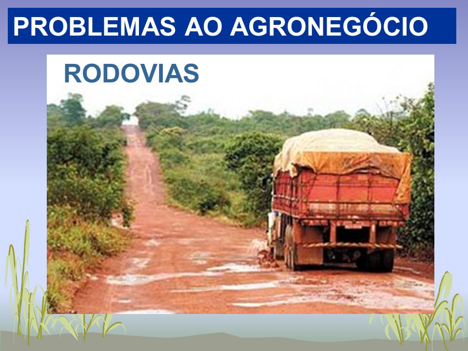 PROBLEMAS AO AGRONEGÓCIO