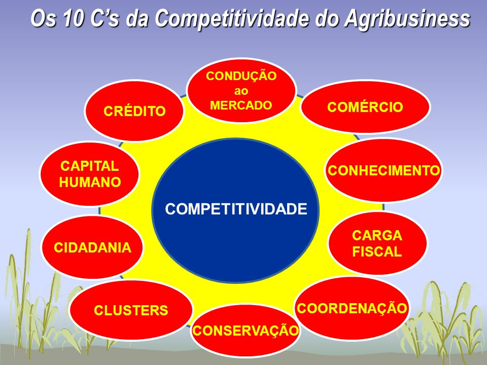Os 10 C's da Competitividade do Agribusiness