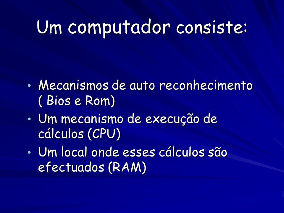 Um computador consiste: