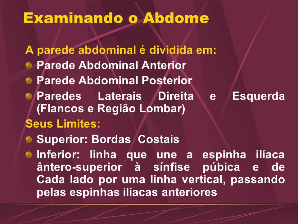 Examinando o Abdome A parede abdominal é dividida em: