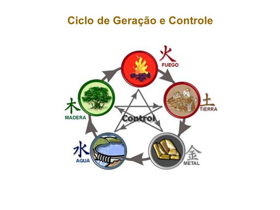Ciclo de Geração e Controle