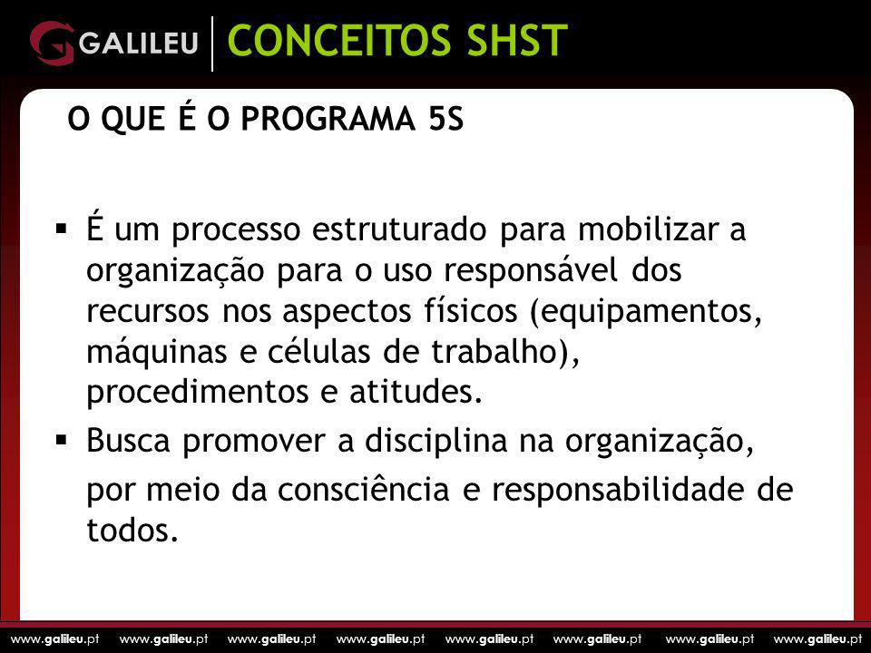 CONCEITOS SHST O QUE É O PROGRAMA 5S
