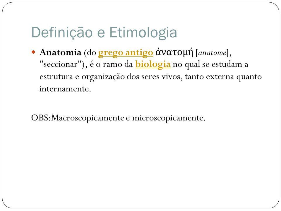 Definição e Etimologia