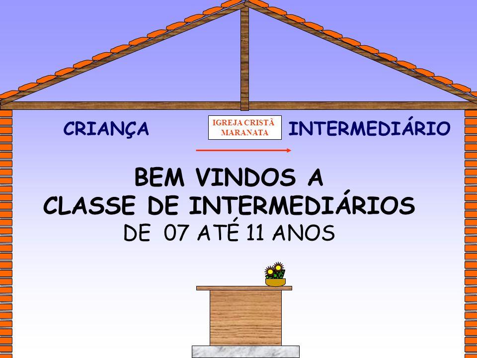 CLASSE DE INTERMEDIÁRIOS