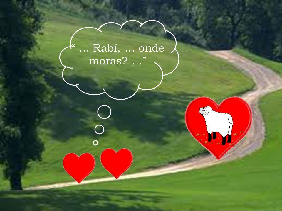 ... Rabí, ... onde moras ...