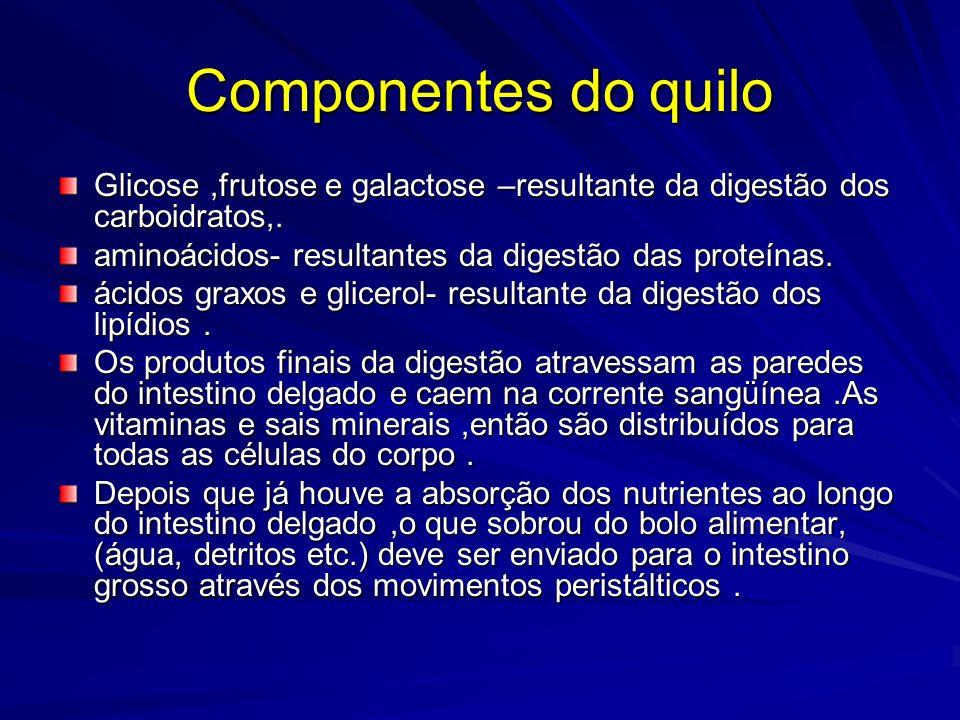 Componentes do quilo Glicose ,frutose e galactose –resultante da digestão dos carboidratos,. aminoácidos- resultantes da digestão das proteínas.