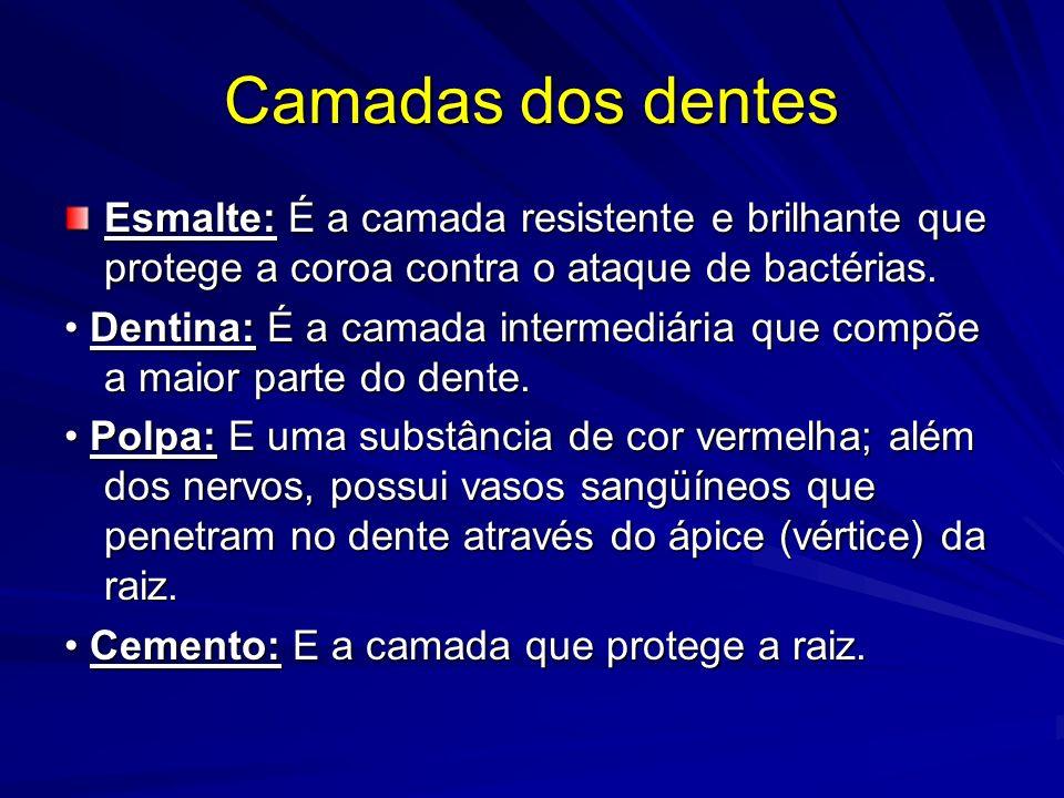 Camadas dos dentes Esmalte: É a camada resistente e brilhante que protege a coroa contra o ataque de bactérias.