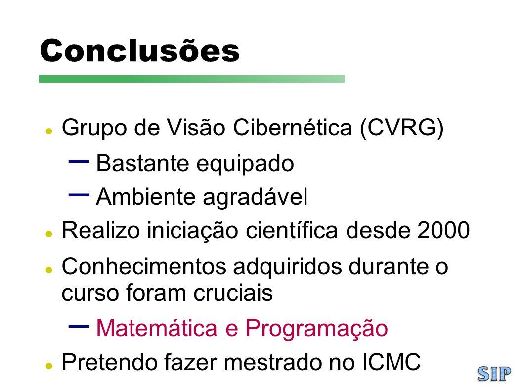 Conclusões Grupo de Visão Cibernética (CVRG) Bastante equipado