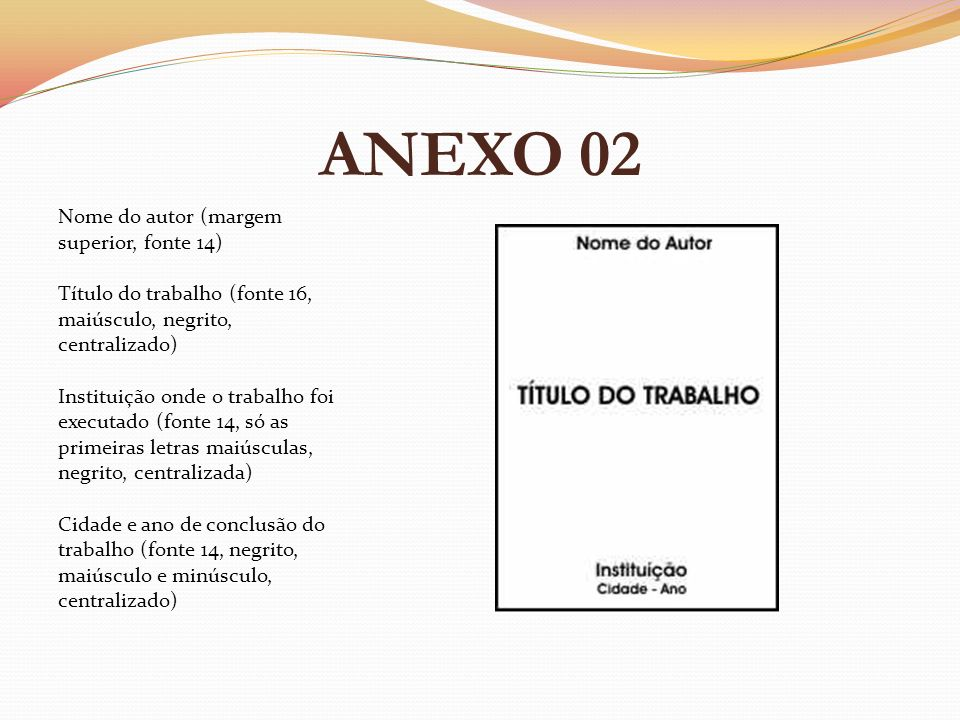ANEXO 02