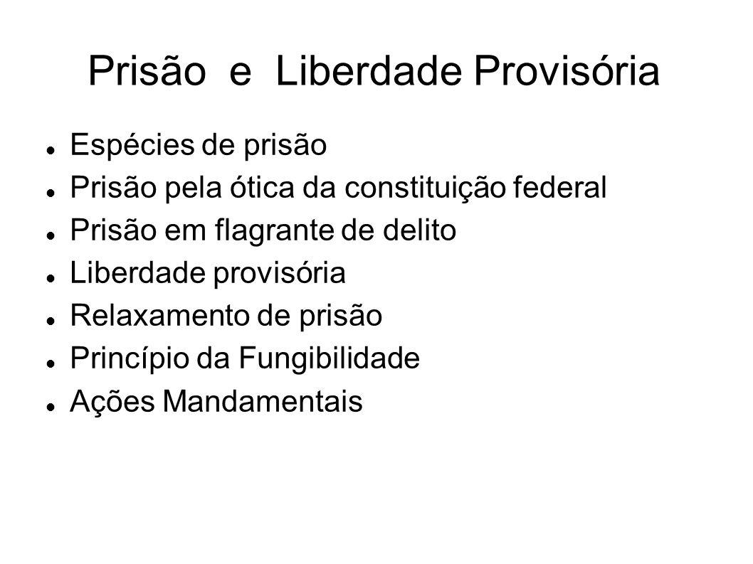 Prisão e Liberdade Provisória
