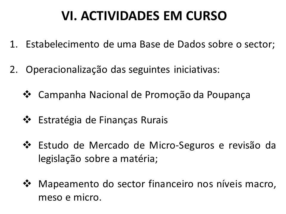VI. ACTIVIDADES EM CURSO