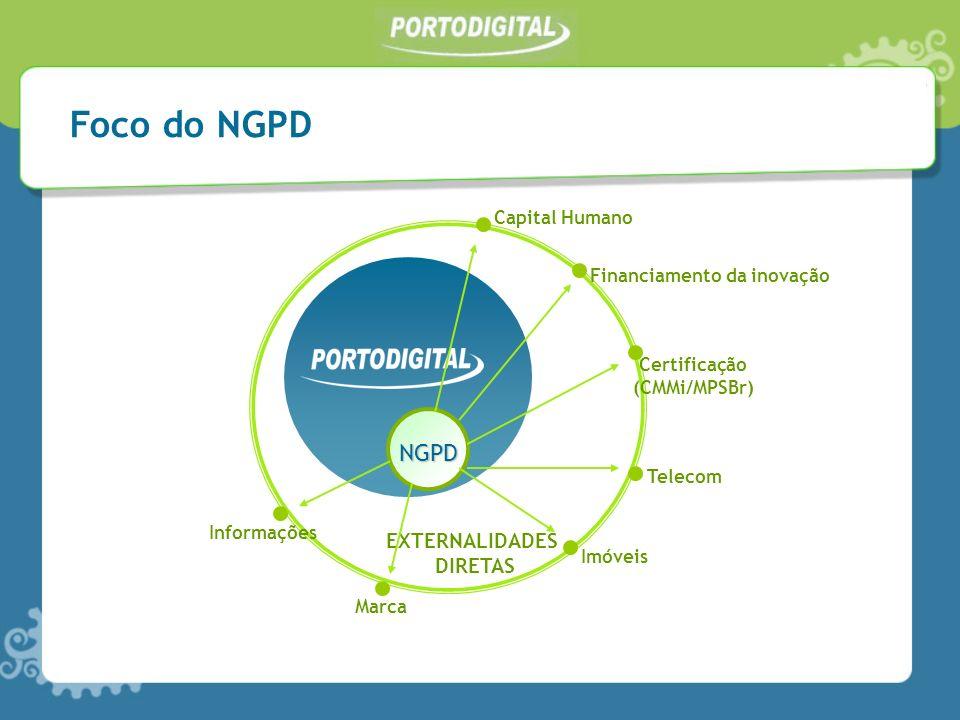 Foco do NGPD NGPD EXTERNALIDADES DIRETAS Capital Humano