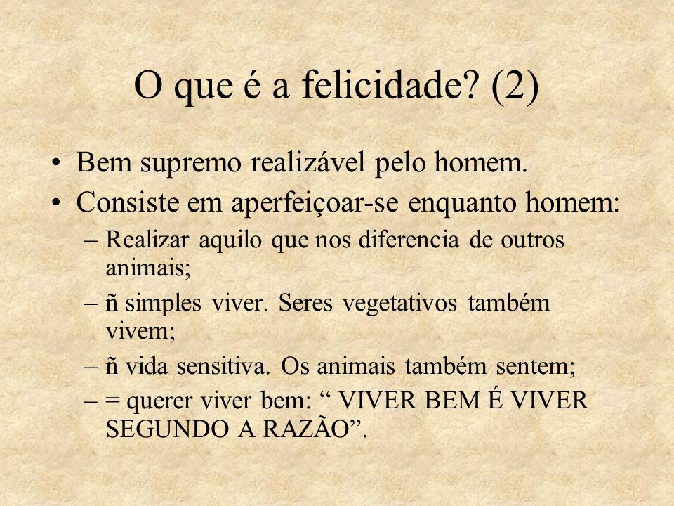 O que é a felicidade (2) Bem supremo realizável pelo homem.