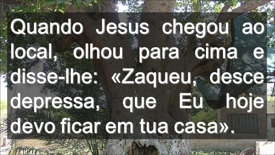 Quando Jesus chegou ao local, olhou para cima e disse-lhe: «Zaqueu, desce depressa, que Eu hoje devo ficar em tua casa».