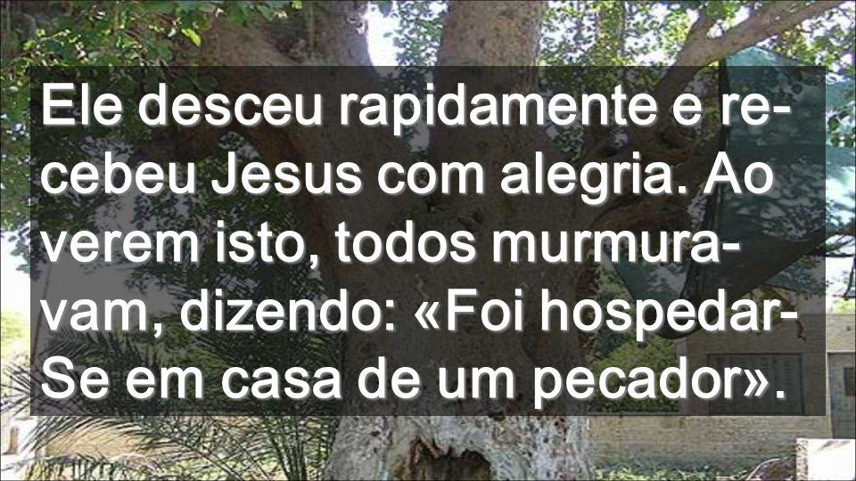 Ele desceu rapidamente e re-cebeu Jesus com alegria