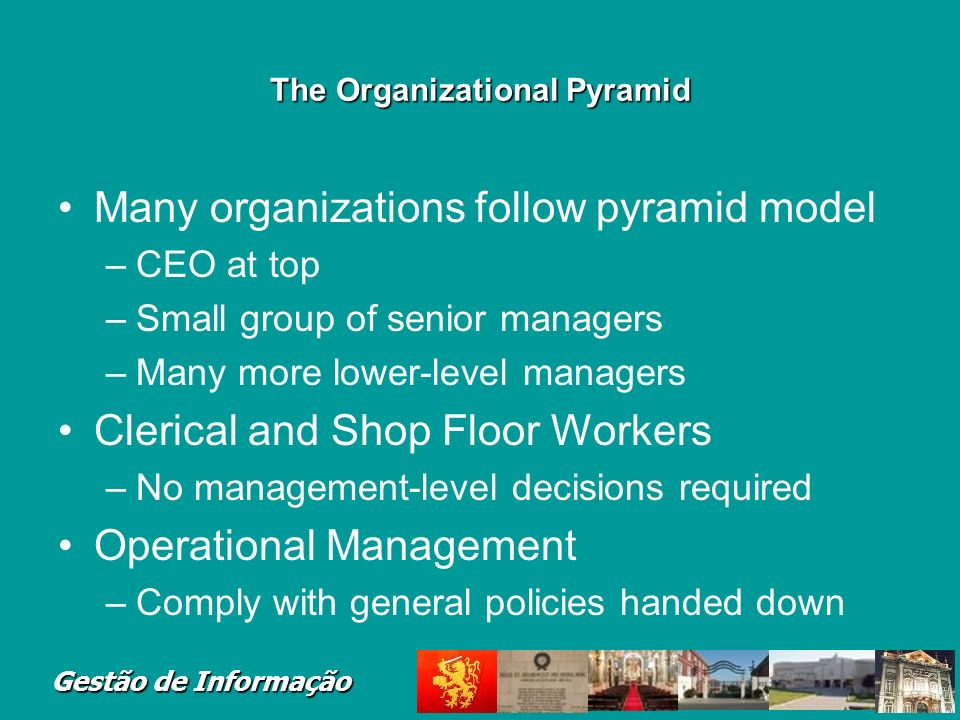 The Organizational Pyramid